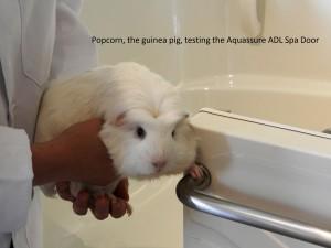 guinea pig testing Aquassure ADL Spa